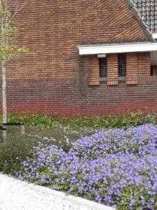 8. de tuin bij de Regenboogkerk in fraaie bloei