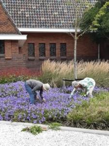 9. leden van de wiedclub bezig met onderhoud aan de tuin